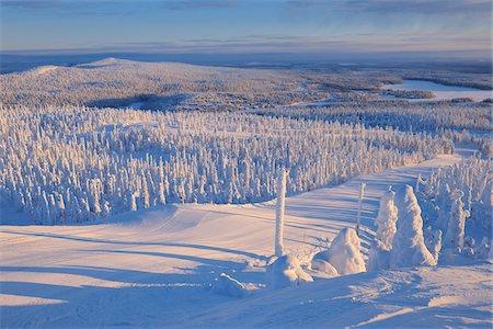 Snow Covered Landscape, Rukatunturi, Kuusamo, Northern Ostrobothnia, Finland Stock Photo - Premium Royalty-Free, Code: 600-05610056