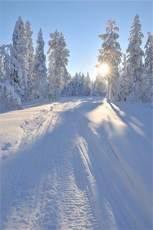Snowmobile Trail, Kuusamo, Northern Ostrobothnia, Finland Stock Photo - Premium Royalty-Free, Code: 600-05610062