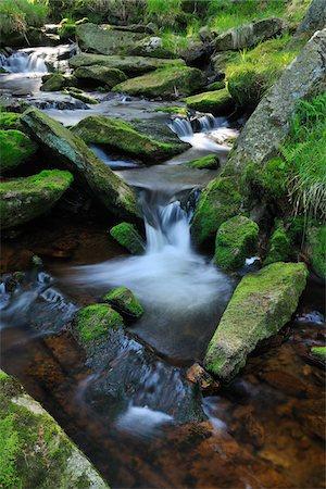 stream - Stream, Oderteich, Sankt Andreasberg, Goslar, Harz, Lower Saxony, Germany Stock Photo - Premium Royalty-Free, Code: 600-05642043