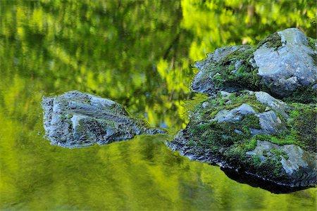 stream - Stream, Harz National Park, Okertal, Oker, Lower Saxony, Germany Stock Photo - Premium Royalty-Free, Code: 600-05642054