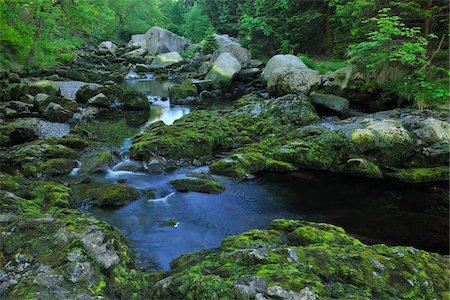stream - Stream, Harz National Park, Okertal, Oker, Lower Saxony, Germany Stock Photo - Premium Royalty-Free, Code: 600-05642050