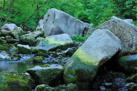 stream - Stream, Harz National Park, Okertal, Oker, Lower Saxony, Germany Stock Photo - Premium Royalty-Free, Code: 600-05642053