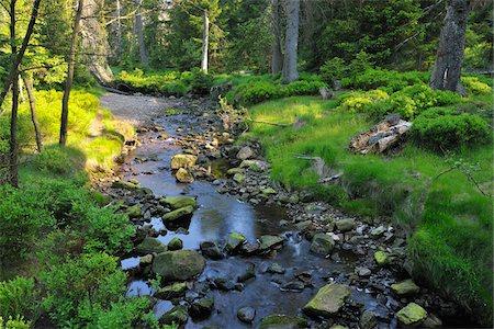 stream - Stream, Oderteich, Sankt Andreasberg, Goslar, Harz, Lower Saxony, Germany Stock Photo - Premium Royalty-Free, Code: 600-05642063
