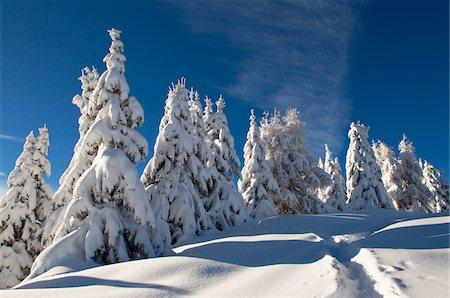 Alleghe, Belluno Province, Veneto, Dolomites, Italy Stock Photo - Premium Royalty-Free, Code: 600-05800576