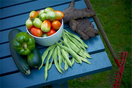 Fresh Picked Garden Vegetables, Toronto, Ontario, Canada Stock Photo - Premium Royalty-Free, Code: 600-05800602
