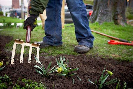Gardener tilling Garden Soil with Pitchfork, Toronto, Ontario, Canada Stock Photo - Premium Royalty-Free, Code: 600-05800621