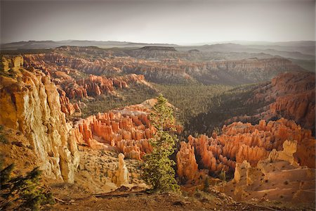 rugged landscape - Bryce Amphitheater, Bryce Canyon National Park, Utah, USA Stock Photo - Premium Royalty-Free, Code: 600-05822083