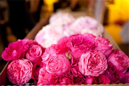 rose - Box of Flowers at Wedding Venue Stock Photo - Premium Royalty-Free, Code: 600-05822163