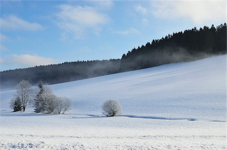 Winter Landscape, Mittelschollach, Black Forest, Baden-Wurttemberg, Germany Stock Photo - Premium Royalty-Free, Code: 600-05837469
