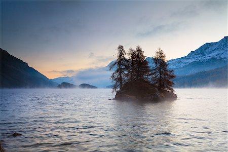 fall trees lake - Larch Trees on Island in Lake Sils, Engadin, Switzerland Stock Photo - Premium Royalty-Free, Code: 600-05837586