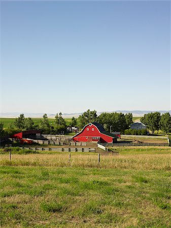 Farm, Pincher Creek, Alberta, Canada Stock Photo - Premium Royalty-Free, Code: 600-05855357
