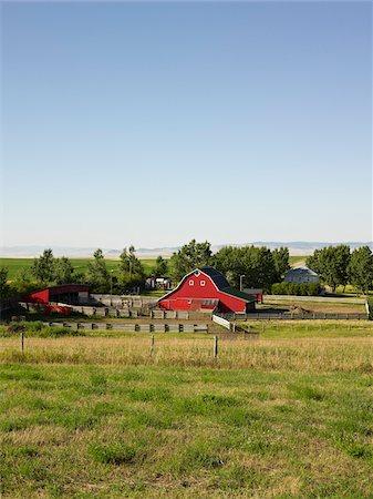 Farm, Pincher Creek, Alberta, Canada Stock Photo - Premium Royalty-Free, Code: 600-05855357