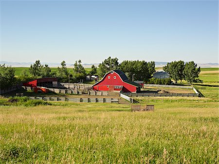 Farm, Pincher Creek, Alberta, Canada Stock Photo - Premium Royalty-Free, Code: 600-05855358
