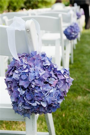 event - Hydrangeas on Chairs at Wedding Ceremony, Toronto, Ontario, Canada Stock Photo - Premium Royalty-Free, Code: 600-05948269