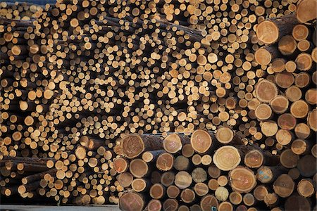 forestry - Logs, Merritt, Nicola Country, British Columbia, Canada Stock Photo - Premium Royalty-Free, Code: 600-05973356