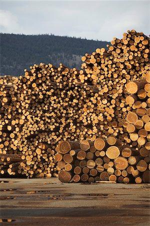 Logs, Merritt, Nicola Country, British Columbia, Canada Stock Photo - Premium Royalty-Free, Code: 600-05973357