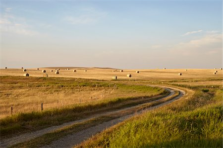 Gravel Road through Hay Fields, Pincher Creek, Alberta, Canada Stock Photo - Premium Royalty-Free, Code: 600-05973397