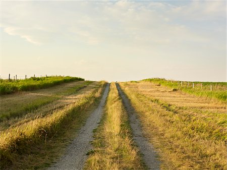 Gravel Road through Canola Field, Pincher Creek, Alberta, Canada Stock Photo - Premium Royalty-Free, Code: 600-05973405