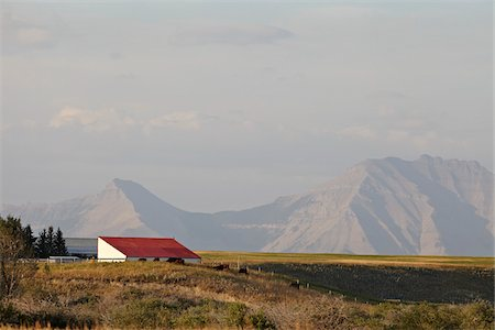 Farm Building, Mountains in Distance, Utopia Farm, Pincher Creek, Alberta, Canada Stock Photo - Premium Royalty-Free, Code: 600-05973400