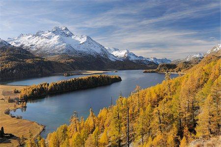 Lake Sils with Trees in Autumn, Piz da la Margna, St Moritz, Maloja District, Engadin, Graubunden, Switzerland Stock Photo - Premium Royalty-Free, Code: 600-06038283