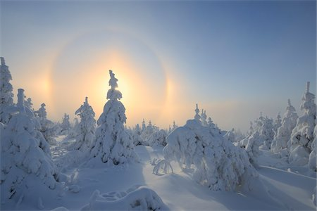 refraction - Halo and Snow Covered Trees, Fichtelberg, Ore Mountains, Saxony, Germany Stock Photo - Premium Royalty-Free, Code: 600-06038296