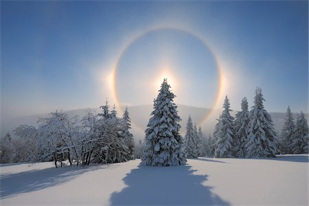 refraction - Halo and Snow Covered Trees, Fichtelberg, Ore Mountains, Saxony, Germany Stock Photo - Premium Royalty-Free, Code: 600-06038304