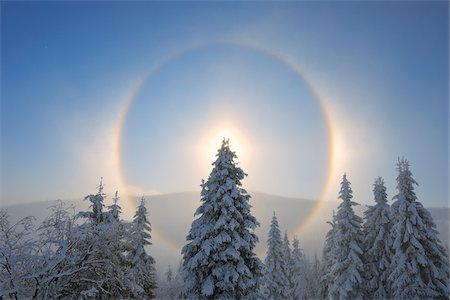 snow covered trees - Halo and Snow Covered Trees, Fichtelberg, Ore Mountains, Saxony, Germany Stock Photo - Premium Royalty-Free, Code: 600-06038305