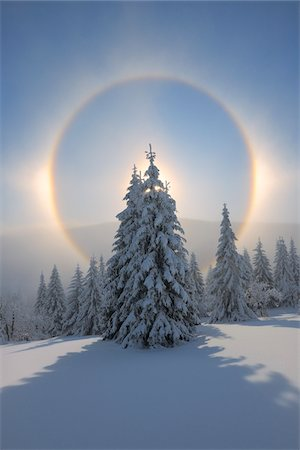 refraction - Halo and Snow Covered Trees, Fichtelberg, Ore Mountains, Saxony, Germany Stock Photo - Premium Royalty-Free, Code: 600-06038303