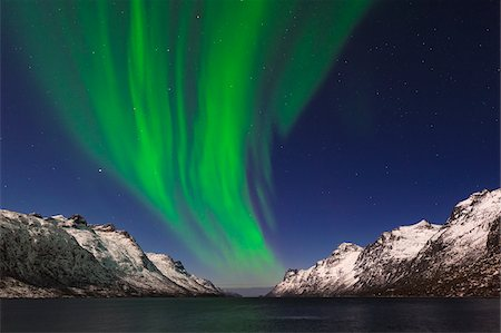 Northern Lights near Tromso, Troms, Norway Fotografie stock - Premium Royalty-Free, Codice: 600-06038341