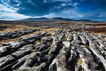 rugged landscape - Moughton Scars, Yorkshire Dales, Yorkshire, Yorkshire and the Humber, England Stock Photo - Premium Royalty-Free, Code: 600-06109535