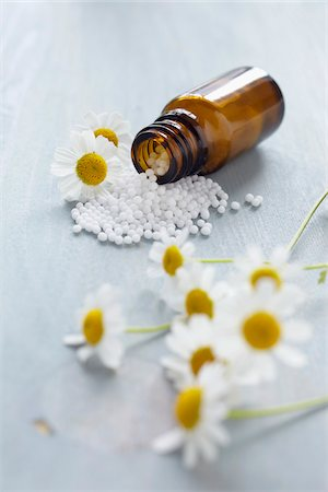pharmaceutical plant - Chamomile and Homeopathic Medicine Stock Photo - Premium Royalty-Free, Code: 600-06180197