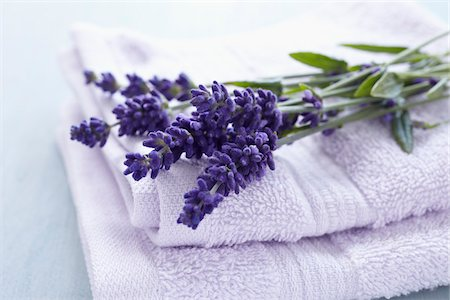 smelling - Lavender Flowers and Towels Stock Photo - Premium Royalty-Free, Code: 600-06180204