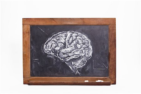 drawing (artwork) - Chalk Drawing of Brain on Blackboard Stock Photo - Premium Royalty-Free, Code: 600-06282076
