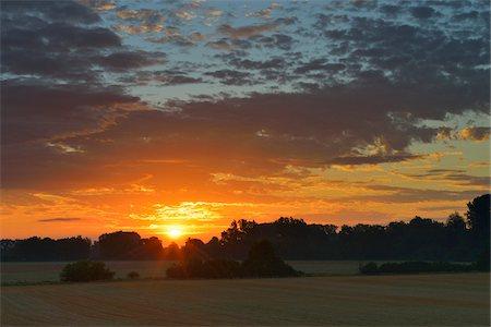 Sunrise, Hesse, Germany Stock Photo - Premium Royalty-Free, Code: 600-06334251
