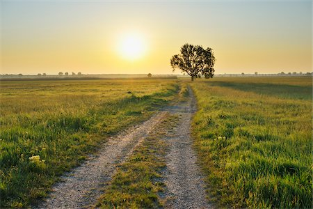 roads and sun - Path, Tadten, Burgenland, Austria Stock Photo - Premium Royalty-Free, Code: 600-06334487
