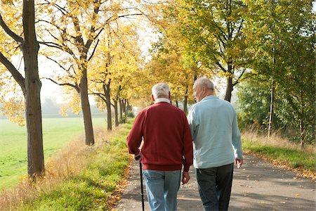 Senior Men Walking on Tree-lined Path in Autumn, Lampertheim, Hesse, Germany Stock Photo - Premium Royalty-Free, Code: 600-06397471