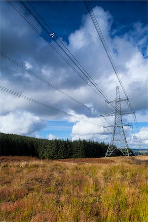 power - Power Lines, Thrunton Woods, Northumberland, North East England, England Stock Photo - Premium Royalty-Free, Code: 600-06452024