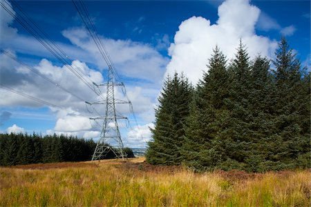 power - Power Lines, Thrunton Woods, Northumberland, North East England, England Stock Photo - Premium Royalty-Free, Code: 600-06452023