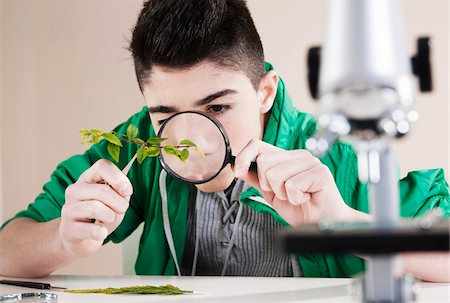 Boy Examining Leaves with Magnifying Glass, Mannheim, Baden-Wurttemberg, Germany Stock Photo - Premium Royalty-Free, Code: 600-06486439