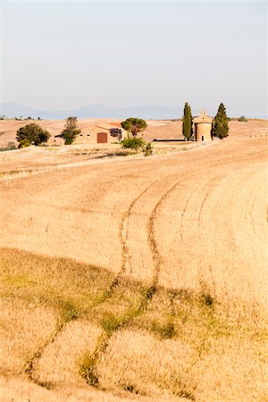 Cappella di Vitaleta framed by Mediterranean Cypress Trees (Cupressus sempervirens) near Barley Field in Summer, San Quirico d'Orcia, Val d'Orcia, Tuscany, Italy Stock Photo - Premium Royalty-Free, Code: 600-06702094