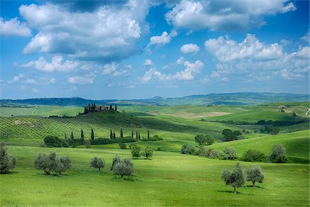 scenic view - Green rolling landscape with fluffy clouds. Pienza, Siena Province, Val d´Orcia, Tuscany, Italy, Mediterranean Area. Stock Photo - Premium Royalty-Free, Code: 600-06732539