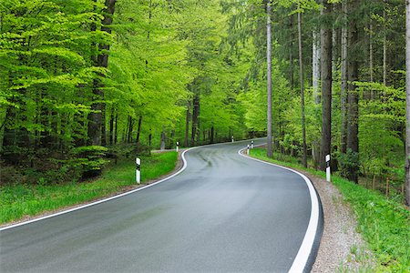 empty - Winding road through forest in spring with lush green foliage. Bavaria, Germany. Photographie de stock - Premium Libres de Droits, Code: 600-06732562