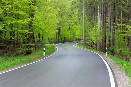 Winding road through forest in spring with lush green foliage. Bavaria, Germany. Stock Photo - Premium Royalty-Free, Code: 600-06732563