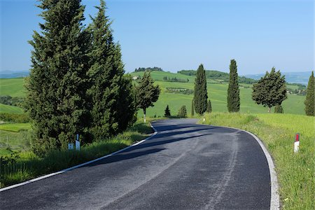 Rural Road lined with Cypress Trees (Cupressus sempervirens). Pienza, Siena district, Tuscany, Toscana, Italy. Stock Photo - Premium Royalty-Free, Code: 600-06732602