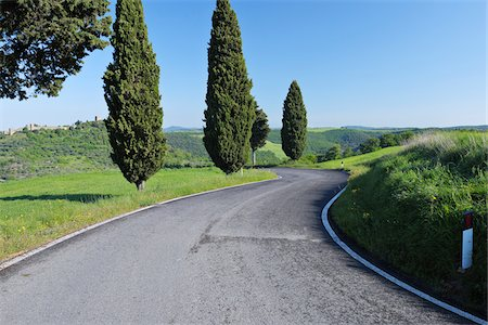Rural Road lined with Cypress Trees (Cupressus sempervirens). Pienza, Siena district, Tuscany, Toscana, Italy. Stock Photo - Premium Royalty-Free, Code: 600-06732603