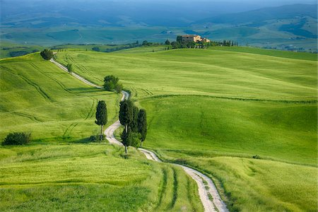 scenic view - Track passing through green fields with cypress trees. Pienza, Siena Province, Val d´Orcia, Tuscany, Italy. Stock Photo - Premium Royalty-Free, Code: 600-06732611