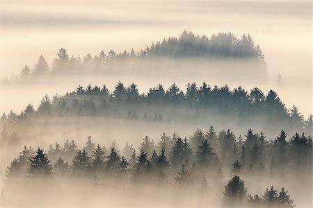 fog (weather) - Morning Mist, Kochelmoor, Bad Tolz-Wolfratshausen, Upper Bavaria, Bavaria, Germany Stock Photo - Premium Royalty-Free, Code: 600-06758359