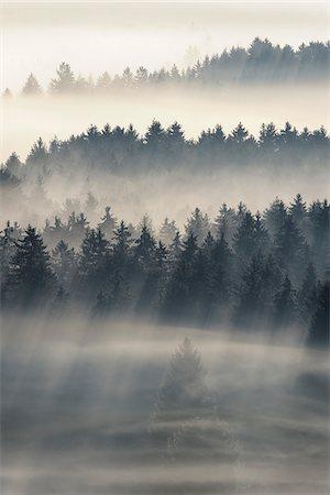 fog (weather) - Morning Mist, Kochelmoor, Bad Tolz-Wolfratshausen, Upper Bavaria, Bavaria, Germany Stock Photo - Premium Royalty-Free, Code: 600-06758361