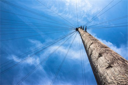 Telephone Pole with Wires leading in all Directions, North London, England Stock Photo - Premium Royalty-Free, Code: 600-06773193