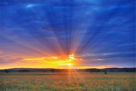 Sunrise over Meadow, Altmuhlsee, Gunzenhausen, Franconia, Bavaria, Germany Stock Photo - Premium Royalty-Free, Code: 600-06803855